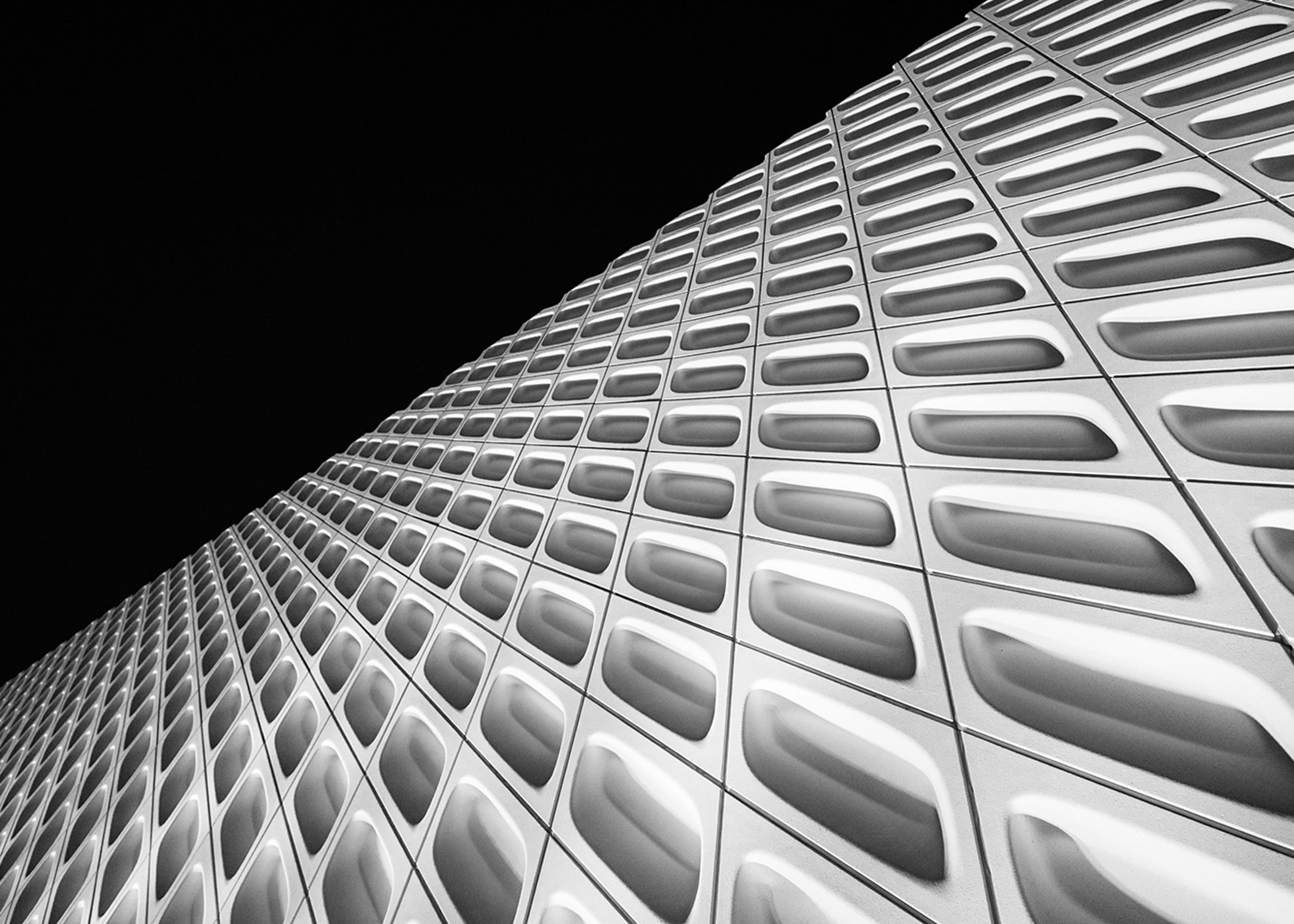 Los Angeles Street Photographer - The Broad Museum Downtown Los Angeles  by Ray Kachatorian