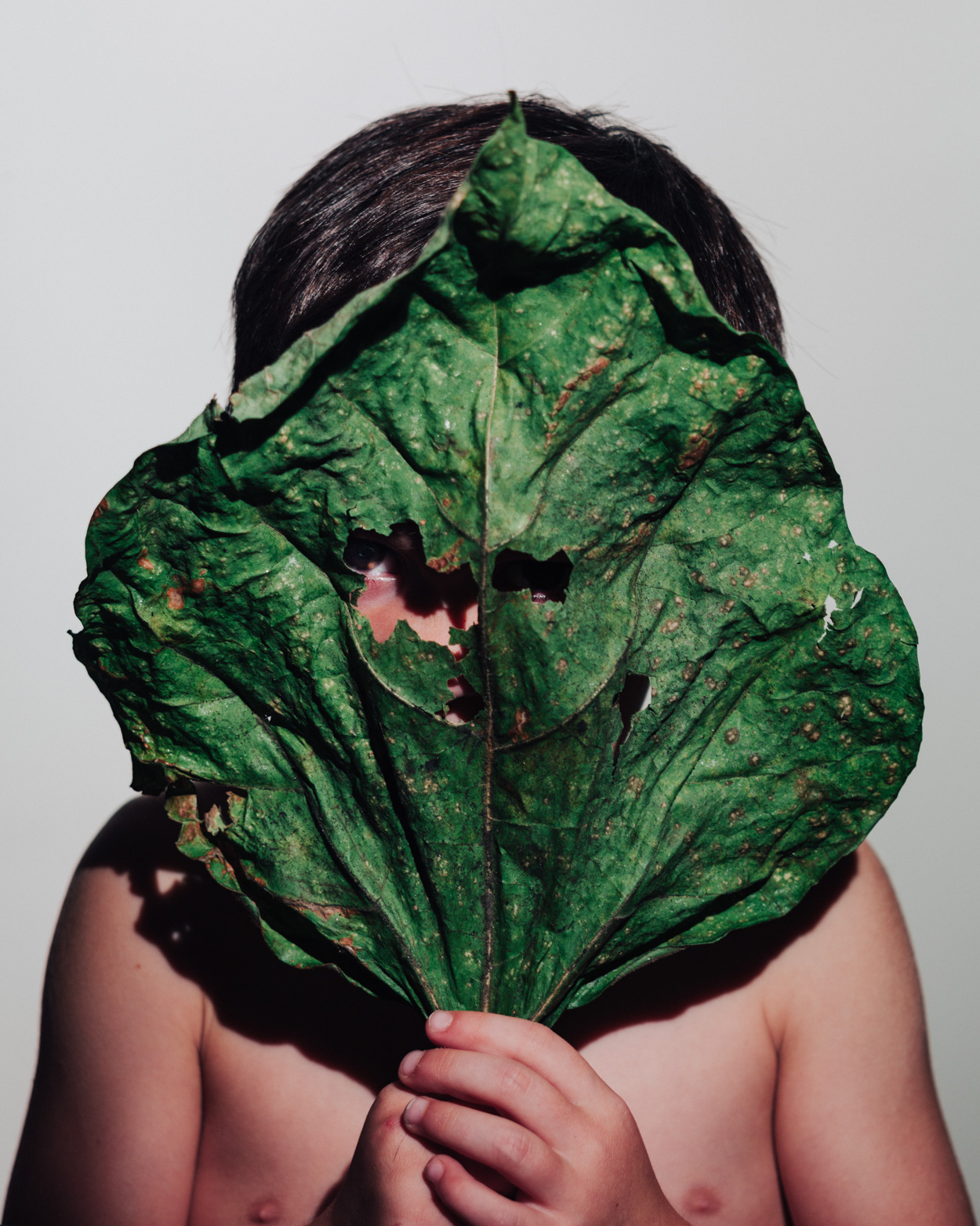 Los Angeles Still Life Photographer - Child holding looking through leaf  by Ray Kachatorian
